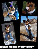 Eevee Fursuit For Sale! by SaltyPuppy