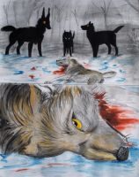 Murder of a wolf by Valizzl