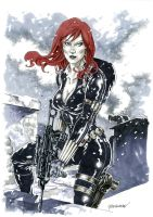 Black Widow by Reybronx