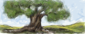 ancient olive tree by aryundomiel