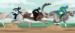junior race Pandora by Arsenic-LacedEstate