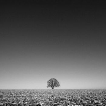nowhere by augenweide