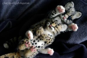 Needle felted ocelots for S. by SaniAmaniCrafts