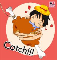 How to catch Luffy by berryjang