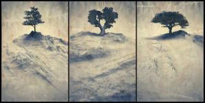 Treesptych - 01 by ChaoticAtmospheres