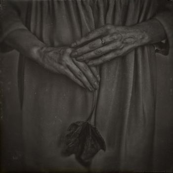 Her skin has the color of wilted leaves dying ... by RapidHeartMovement