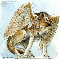 Winged Wolf by Nambroth