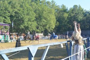 King Richard's Fair, Jousting Ceremony 2 by Miss-Tbones