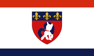 Flag of Neigh Orleans by dalea1
