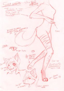 How 2 Anthro by Vivid-Nightmares