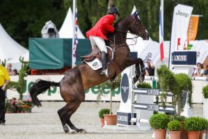 3DE Show Jumping Phase Stock 168 by LuDa-Stock