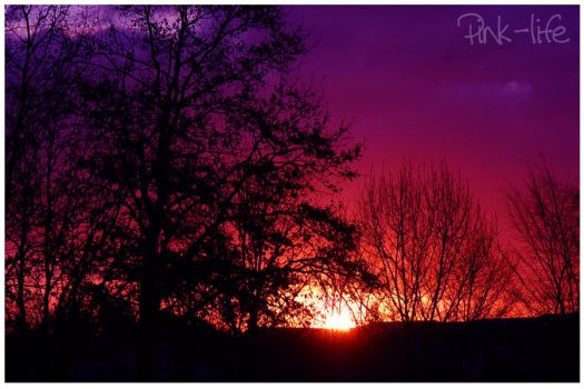 Sunset.3 by pink-life