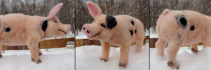 Custom Needle-Felted Birthday Pig by DancingVulture