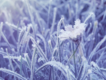 Frozen body, liberated soul by Blossom-Lullabies