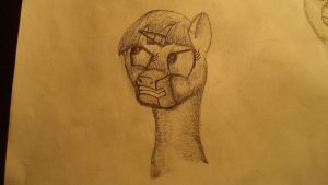 Agry Twilight head sketch by gremlin81
