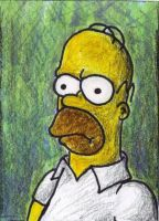 homer portrait by annuh
