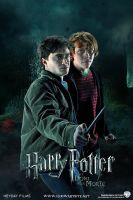 Harry and Ron - Deathly Hallows Extended by HogwartSite