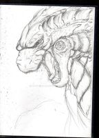 BearGoji-Godzilla 2014 sketch by DR-Studios