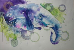 Elephant-competition submission by xXxParabolaxXx