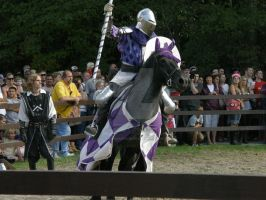 Royal Jouster by AponiRainbow