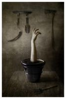 Grow Up  01 by IreneLangholm