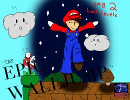 BSC: Super Mario Bros. 2: Lost Levels by BreakSlash
