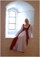 Lady Of The Castle X by Eirian-stock