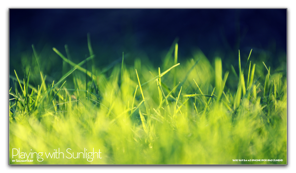 Playing with Sunlight by salmanarif