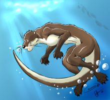 Otter swim by ott-kun