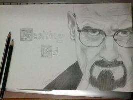 Breaking Bad by natalia277