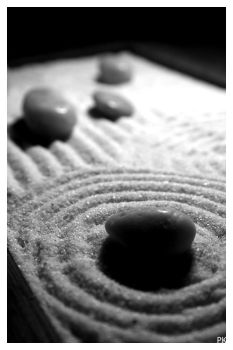 Zen Garden . . . III by Snoodesigns