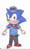 Sonic The Carhop by cdot284