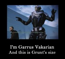 Garrus knows Grunt's size (2) by kamagawa