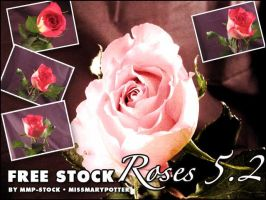 FREE STOCK, Rose Pack 2 by mmp-stock