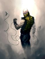 Scorpion redesigned by jameszapata