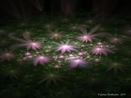 Flowers In The Night by jim88bro