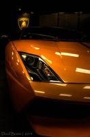 Keep an eye on me - Gallardo by InOnesMindsEye