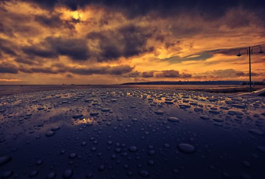 after the rain by 1poz