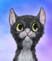 Ravenpaw by Radioactive-Insanity