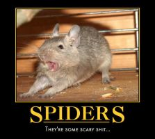 Random Motivational: Arachnophobic Degu by Miku-Nyan02