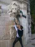 Lions fight with a snake.Help us !!! by BOYDEX