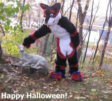 Wolf Dog Zodi-ek: Happy Halloween by Eternalskyy