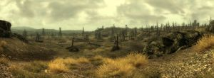 Fallout 3 Wasteland by 40D-ZiLLa