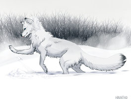 Commission - Snowdrift by Haunthid
