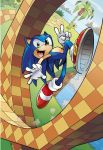 Sonic FCBD 2011 Cover by herms85