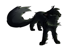 Hollyleaf by Optimistic-Whiteout