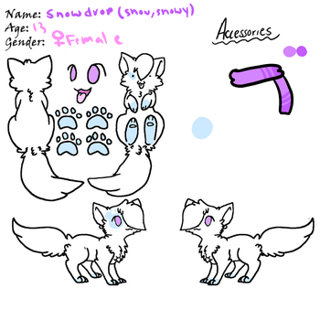 Snowy Ref sheet by Snowdrop-the-Kitty