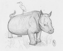 Short-leg-rhino by painted-wolfs-den