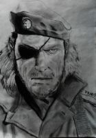 Big Boss by Famo23