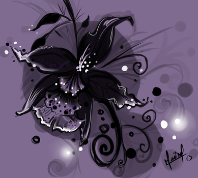 The Black Orchid by Senticous
